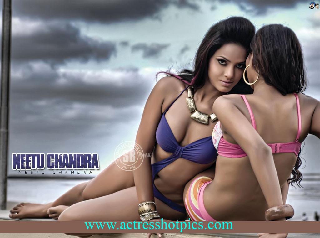 http://ravinderpics.files.wordpress.com/2010/07/bollywood-actress-neetu-chandra-swimsuit-pictures.jpg